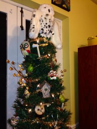 Olivia's Owl tree 2