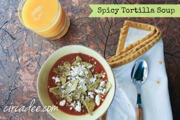 spicy-tortilla-soup from circadee.com