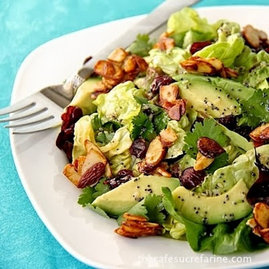 Cranberry and Avocado Salad with Candied Spiced Almonds and Sweet White Balsamic Vinaigrette from Honest Cooking