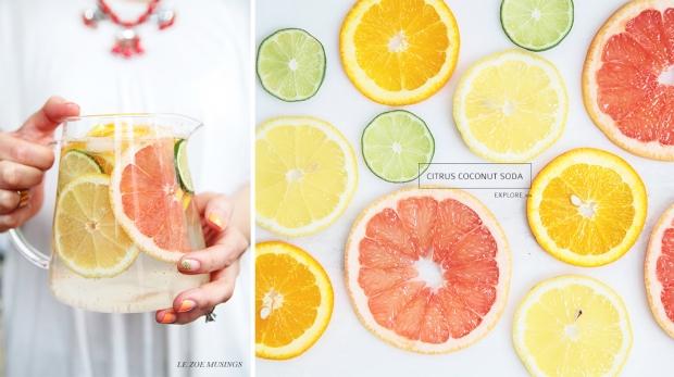 citrus-coconut-soda_le-zoe-musings_banner